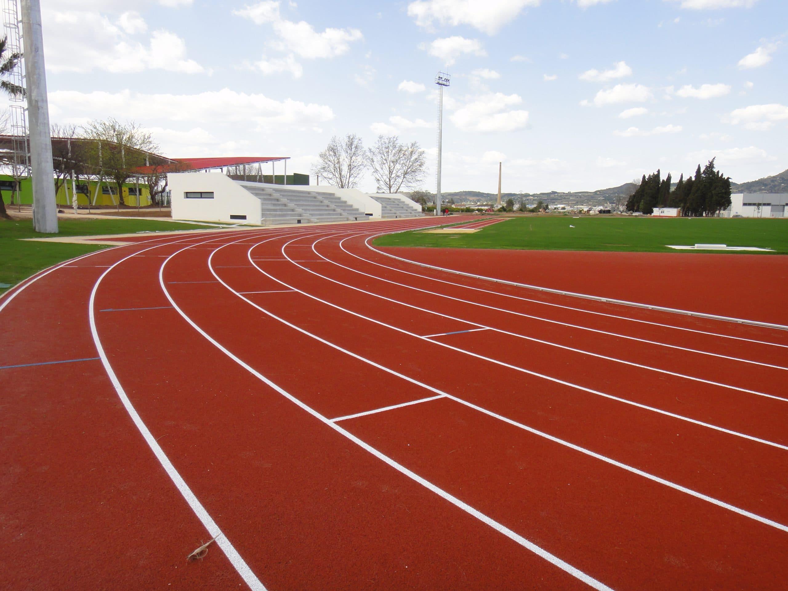 Carrera de 100 m lisos